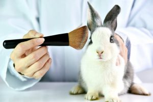 makeup cruelty free